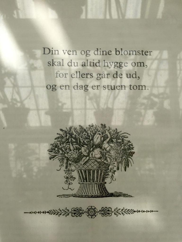 Om-blomster
